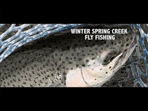 Winter Spring Creek Fishing