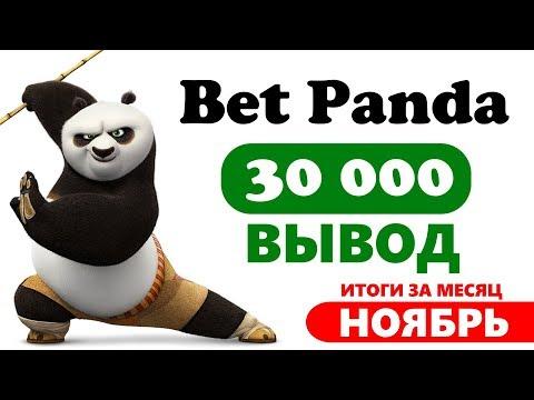 BetPanda итоги за ноябрь / статистика, обмен баллов и вывод 30 000 рублей!