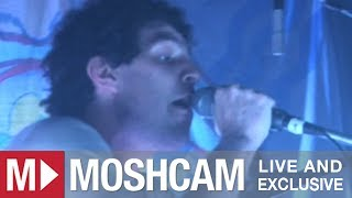 Animal Collective - Summertime Clothes | Live in Sydney | Moshcam