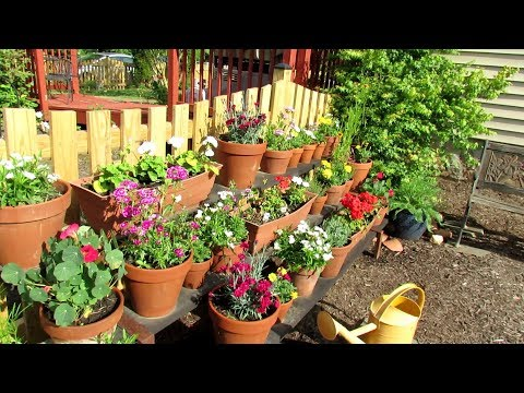 Tour 9 2019: TRG Homestead - My 3 Gardens, Containers, Transplants, Growth, Projects & Tips