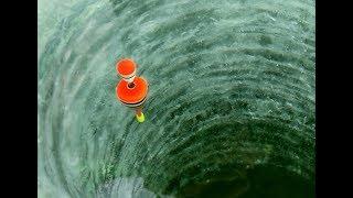 Рыбалка зимняя на поплавочную удочку
