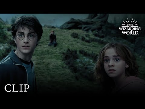 Download The Whomping Willow | Harry Potter And The Prisoner Of Azkaban HD Mp4 3GP Video and MP3