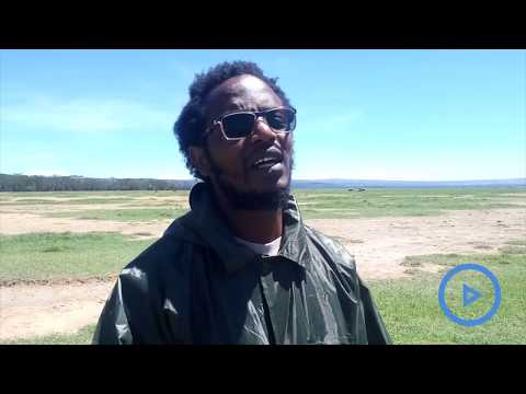 Comedian Professor Hamo appointed as Lake Nakuru's rhino ambassador