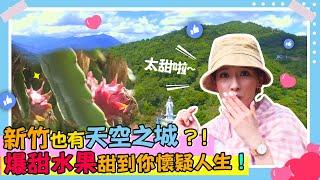 【下班Go Fun吧!】報復性旅遊不能說得祕密景點 大山背休閒農業區
