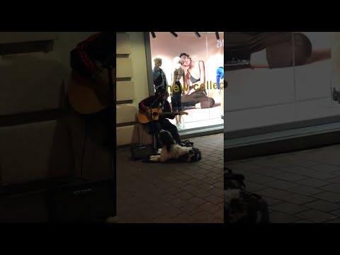 Необычный уличный дуэт
