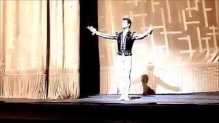 Roberto Bolle -Curtain Call - Swan Lake 27.6.2014 - Met - New York