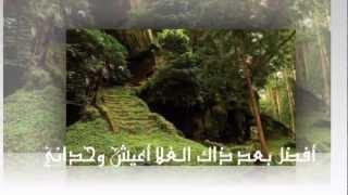 تحميل اغاني مجانا صدى الذكرى / الشاعر : مشاري الكرشمي