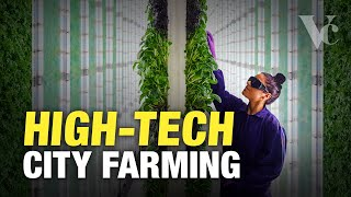 Why the Future of Farming is in Cities - The Big Money in Vertical Farming