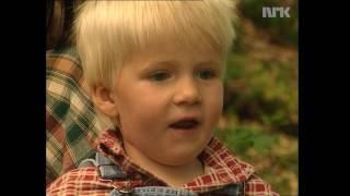 Seljåsen dyretrall og trollevers - filmen om buormen