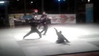 Nuit universitaire de arts martiaux 2012