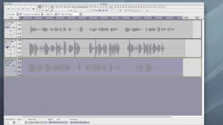 Setting Audio Recording Levels - Audacity