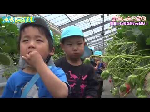 Chichibu Nursery School