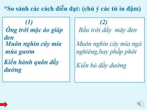 Tiếng Việt Lớp 6: Bài Nhân Hóa