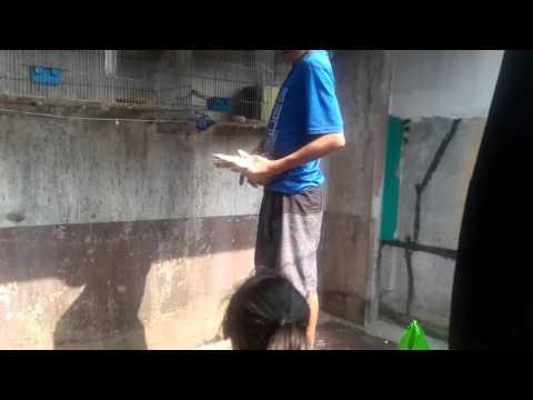 Kung sino ang nagkaroon ng mga problema pagkatapos ng dibdib plastic