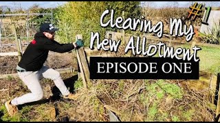 How to | Start An Allotment - The BIG Clear Up