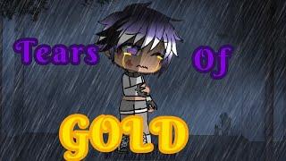 《Tears of Gold》~GLMV~1/?