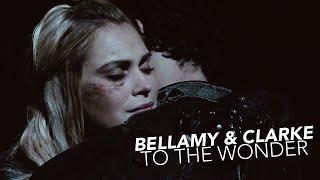 Bellamy & Clarke-  To the wonder