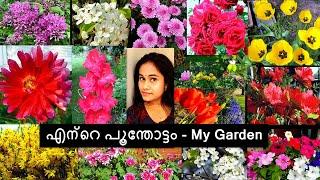 My Home Garden Chicago  Miss you Paul Walker 😣😥 #Homegarden #Americangarden #Gardenchicago