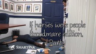 If horses were people - Broodmare edition, Part 1