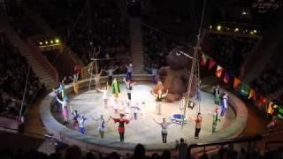 В курский цирк приехали пираты  и медведи канатоходцы