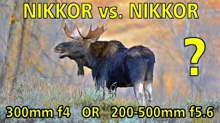 NIKKORvs.NIKKOR:WhichNikontelephototobuy,the300mmf4AF-Sor200-500mmf5.6?
