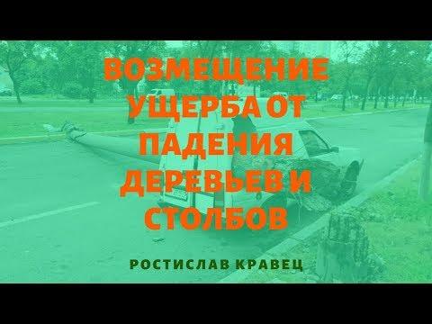 Возмещение ущерба от падения деревьев и столбов | Адвокат Ростислав Кравец
