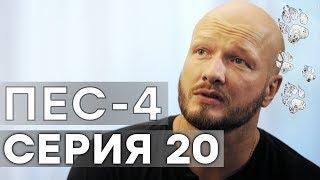 Сериал ПЕС - 4 сезон - 20 серия - ВСЕ СЕРИИ смотреть онлайн | СЕРИАЛЫ ICTV