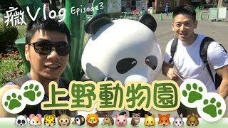 上野動物園的猴子居然會蓋被被? 癓VlogEpisode3