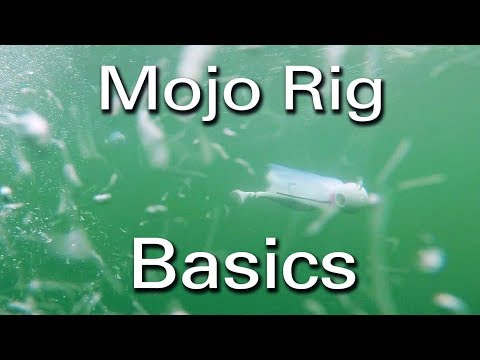 How To: Trolling Mojo's For Striped Bass