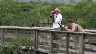 Everglades National Park 3-minute Tour