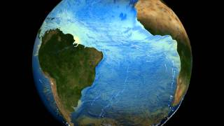 The Thermohaline Circulation - The Great Ocean Conveyor Belt