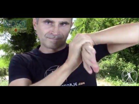 Funzionamento in Germania dellarticolazione del ginocchio