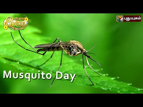 Mosquito-Day-in-Iniyavai-Indru--23-07-2016-I-Puthuyugam-TV