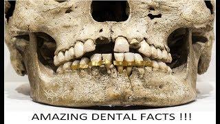 Amazing Dental Facts 1