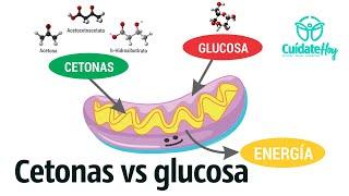 Cetonas, mejores que la glucosa