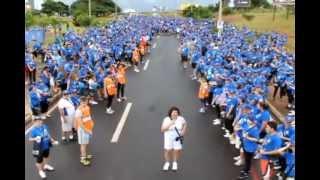 Caminhada pela Vida em Bauru 0 17-03-2013