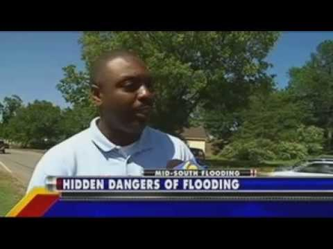 Pest Control Expert Gives Tips to Protect Homeowners From Pests