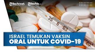 Bukan Bentuk Suntikan, Israel Berhasil Temukan Vaksin Covid-19 dalam Bentuk Pil