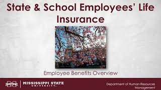 State and School Employees' Life Insurance Video