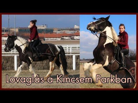 pénisz lovaglás