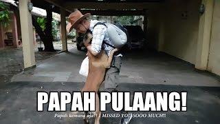AKHIRNYA PAPAH PULAANG! | SPARTA THE BELGIAN MALINOIS