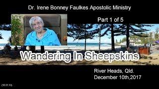 (Part 1 of 5) Wandering in sheepskins
