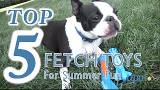 Top 5 Fetch Toys for Summer - 2016 Fun