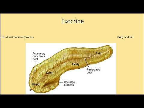 Perioada de incubație a toxoplasmozei copilăriei