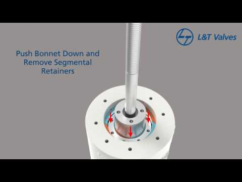 L&T Pressure Seal Gate Valves