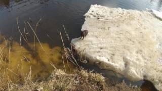 Рыбалка на реке кубря ярославская обл