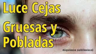 Luce Cejas Gruesas y Pobladas
