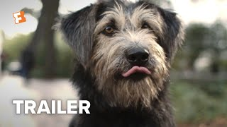 Lady and the Tramp Trailer #2 (2019)   Movieclips Trailers