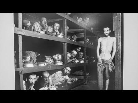 Какие предоставляются льготы узникам фашистских концлагерей в 2020 году