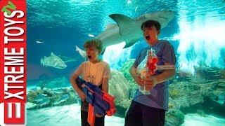 Teleport Trouble Part 2! Nerf Battle in the Aquarium!